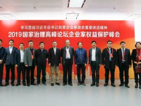 2019国家治理高峰论坛企业家权益保护峰会在京举行